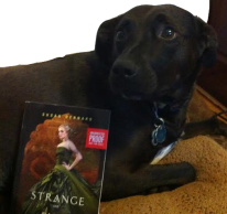 So here you have an adorable picture of Bindi with Strange and Ever After. Blurriness due to swiftly begging dog.